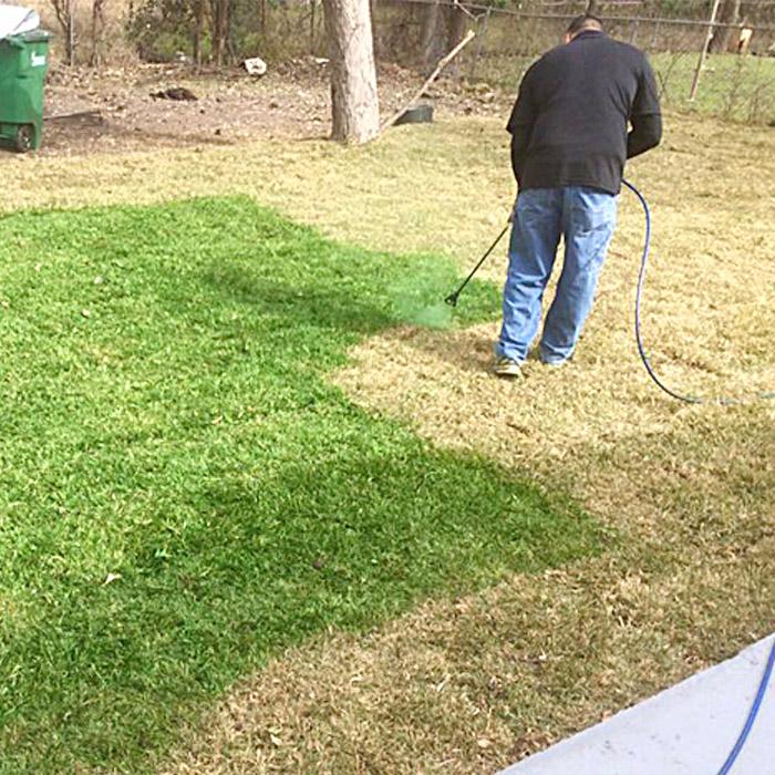 Lawn Spray Paint