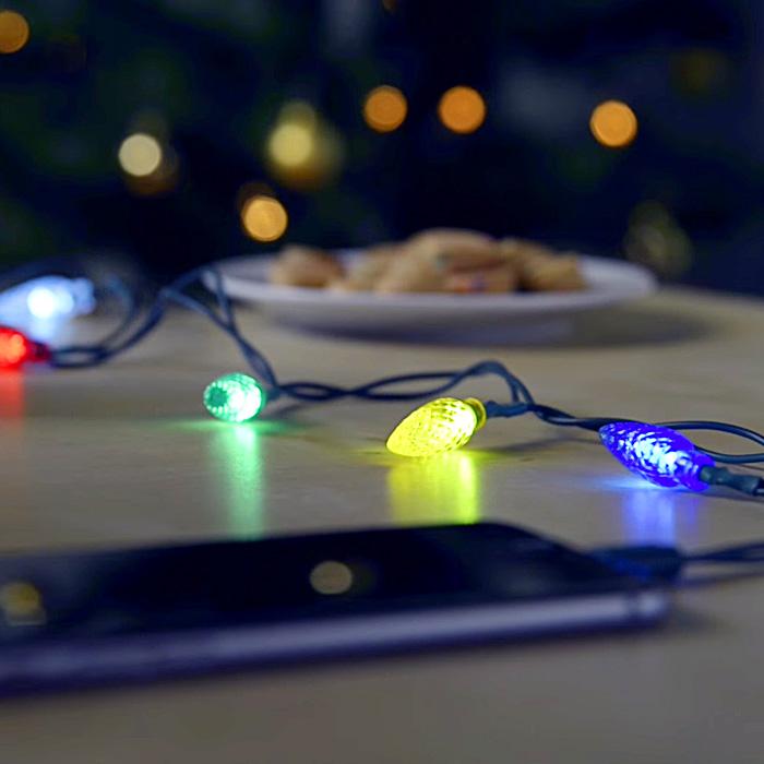 Christmas Charger