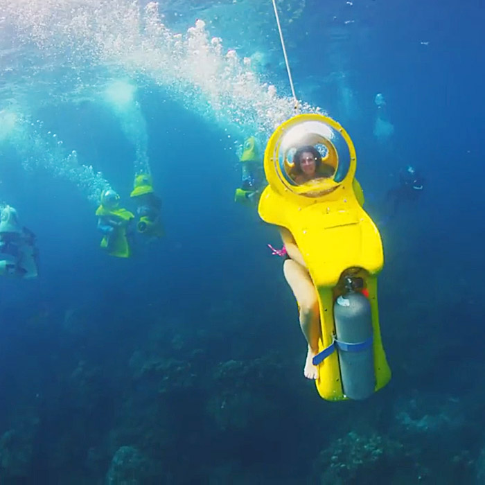 Stuart Cove's Dive Bahamas