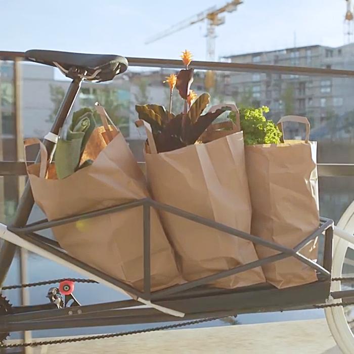 The Convertible Electric Bike