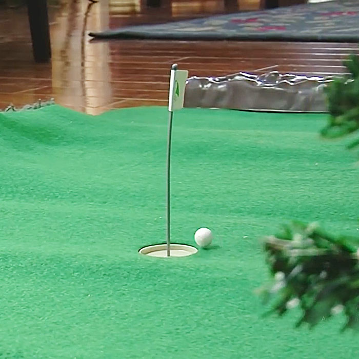 indoor golf toy