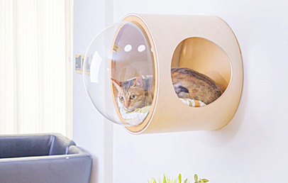 Awesome Wall Mounted Cat Bed With Bubble Window