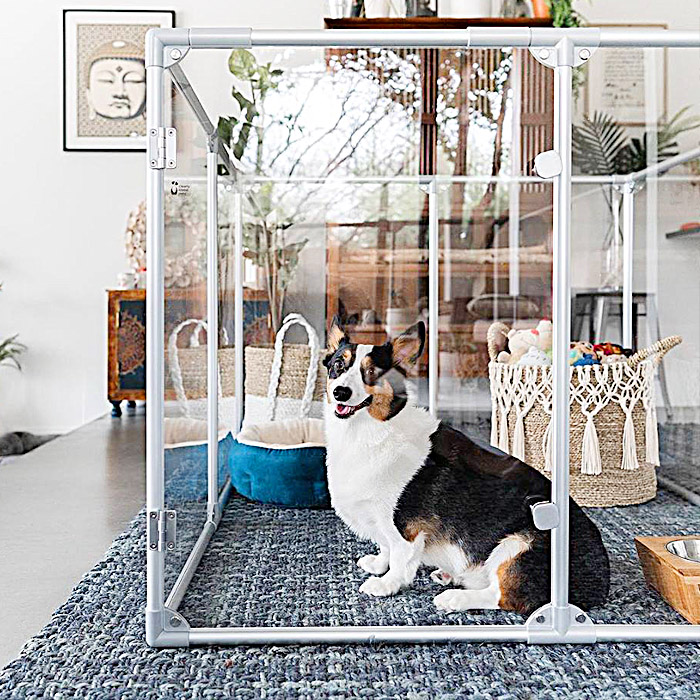 modern dog crate - Clearly Loved Pets Transparent Dog Pen