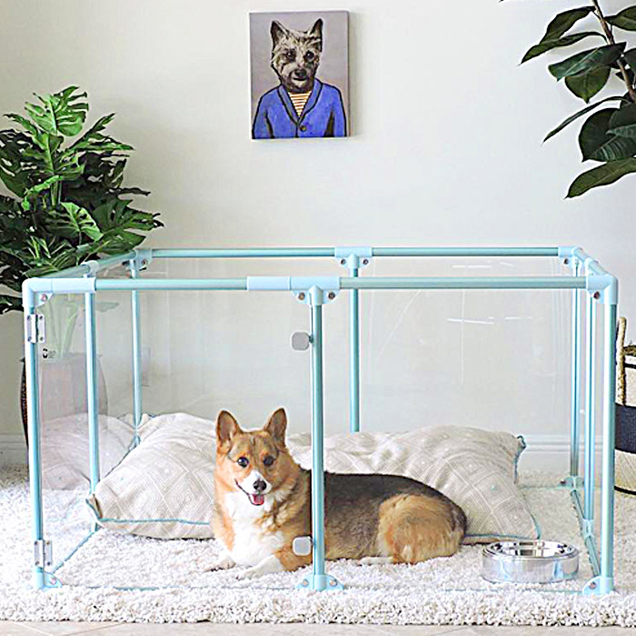 clearly loved pets modern dog pen