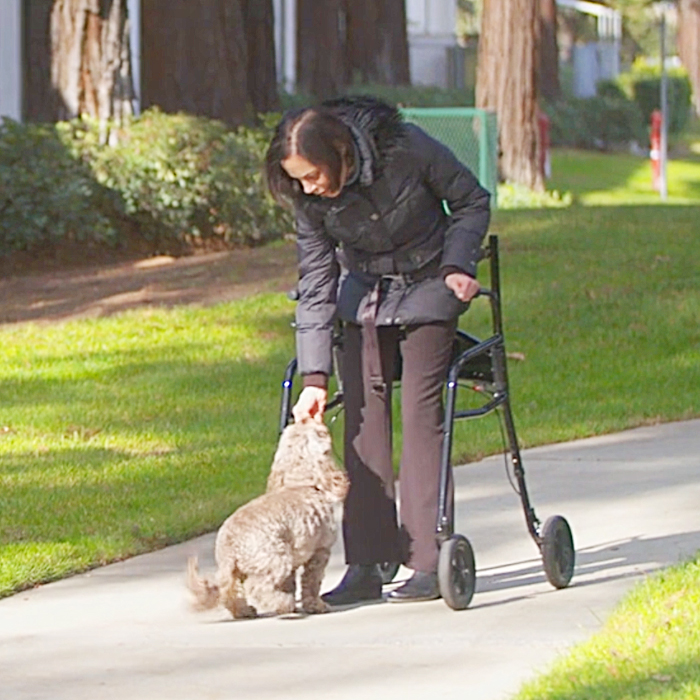 walking assistance devices for elderly