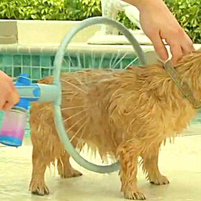 Dog Washing Ring