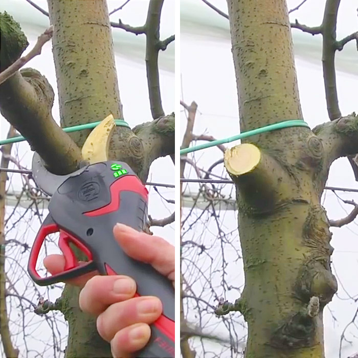 Electric Pruning Shears For Trees