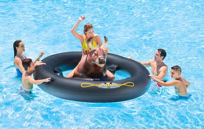 Best Inflatable Bull Riding Pool Toy Inflat a Bull