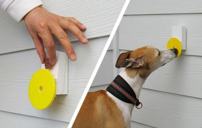 Best Dog Doorbell Pebble Smart Doggie Doorbell