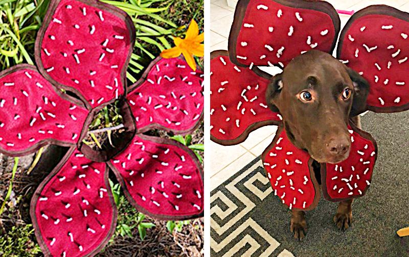 Extreme Demogorgon Dog Costume | Stranger Things Costume