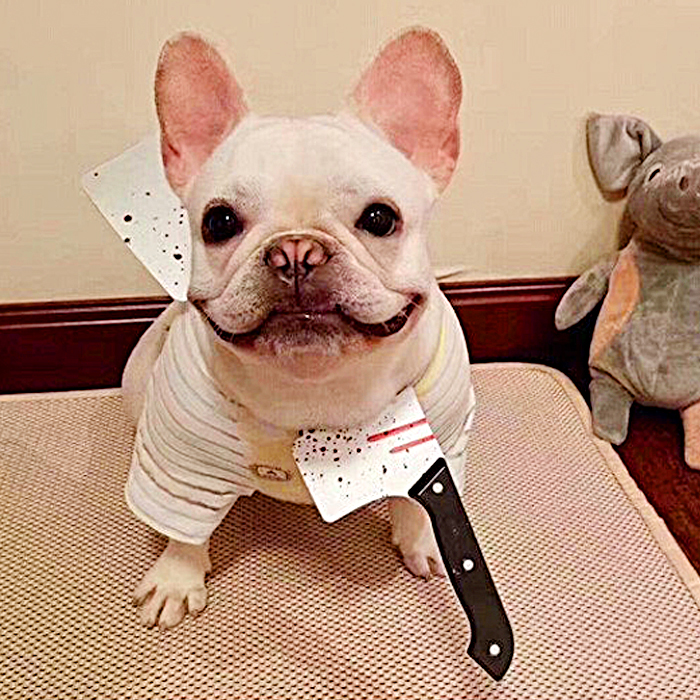 Funny Halloween Costume Saw Axe headband for Pet Dog Cat and Human