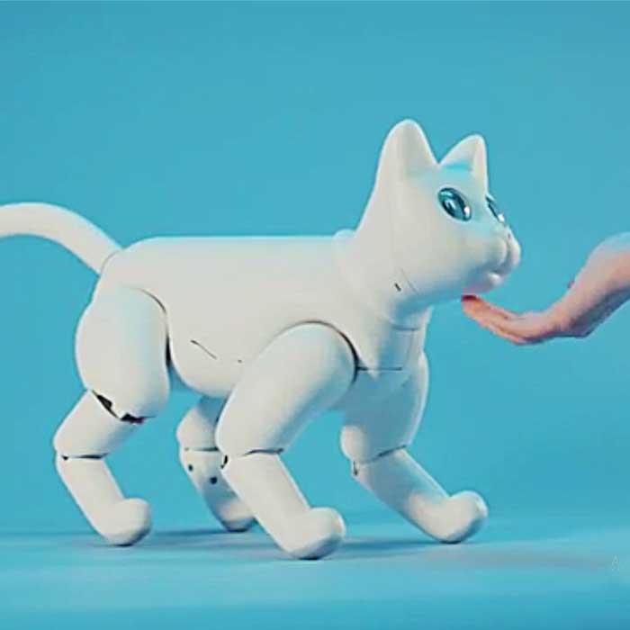 Interactive Robotic Cat