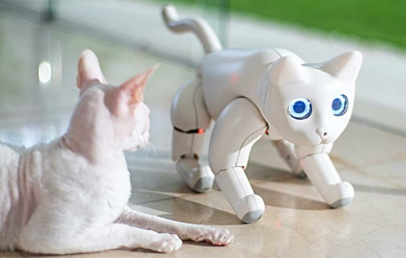 This Interactive Robotic Cat Will Play With You | MarsCat