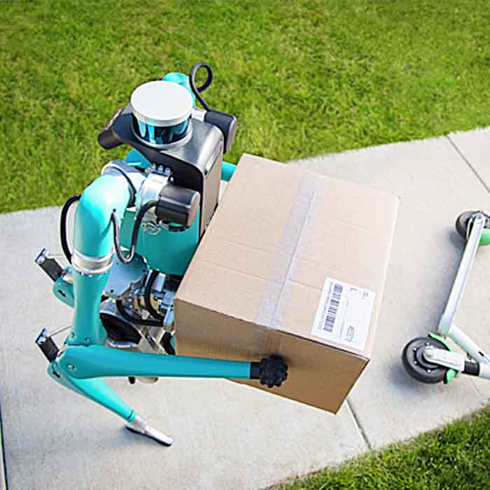 Package Delivery Robot