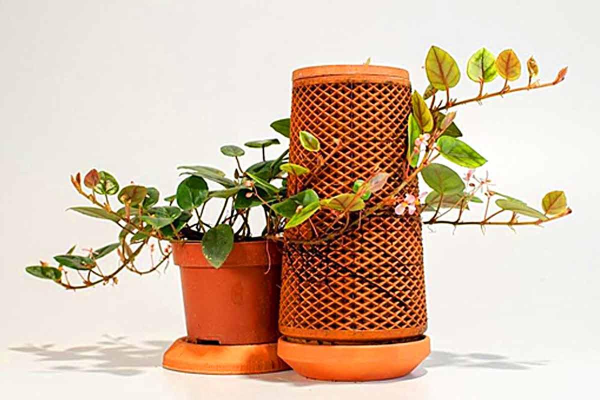 Terraplanter's Indoor Planter Pot Grows Plant Without Soil ...