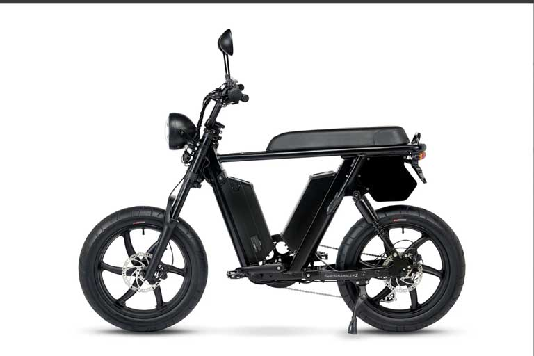 two-battery e-bike